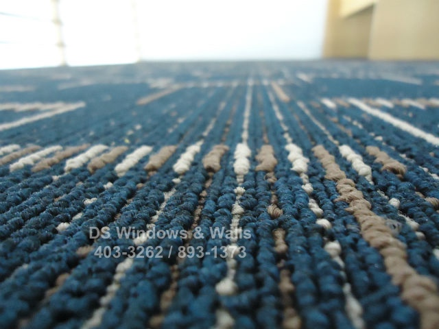 Blue Carpet With Design