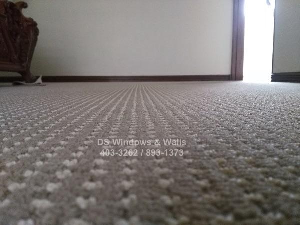 New Tango carpet loop pile