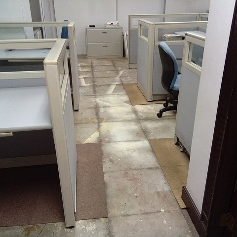 Carpet flooring stripping